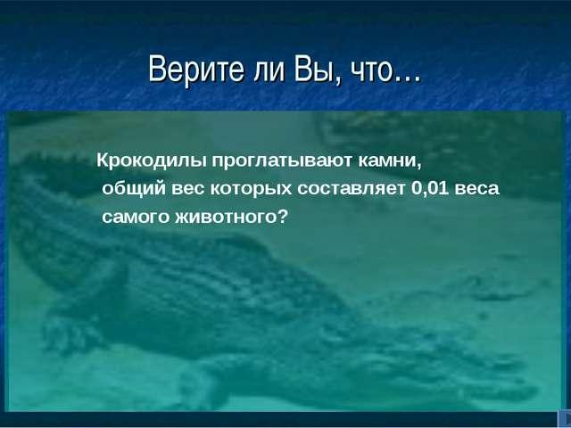 Верите ли Вы, что… Крокодилы проглатывают камни, общий вес которых составляет...