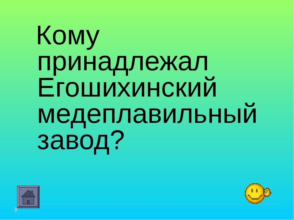 Кому принадлежал Егошихинский медеплавильный завод?