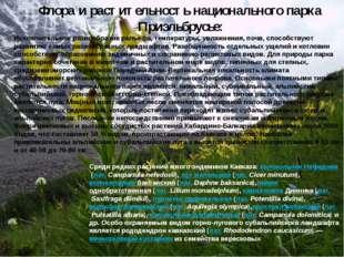 Исключительное разнообразие рельефа, температуры, увлажнения, почв, способств