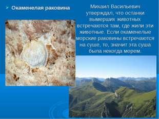 Михаил Васильевич утверждал, что останки вымерших животных встречаются там, г