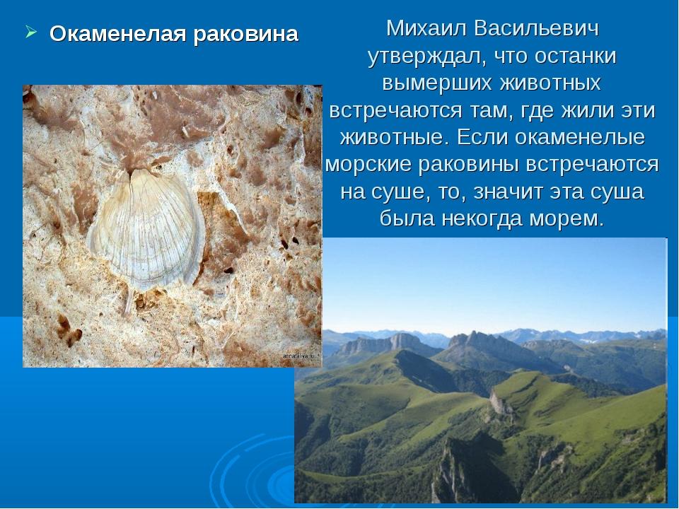 Михаил Васильевич утверждал, что останки вымерших животных встречаются там, г...