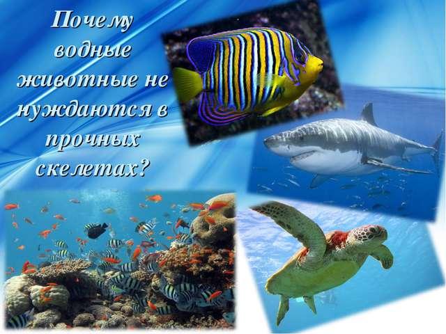 Почему водные животные не нуждаются в прочных скелетах?