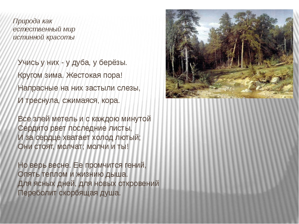 Природа как естественный мир истинной красоты Учись у них - у дуба, у берёзы....