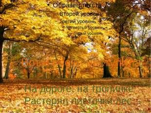 Вот и осень наступила… На дороге, на тропинке Растерял листочки лес…