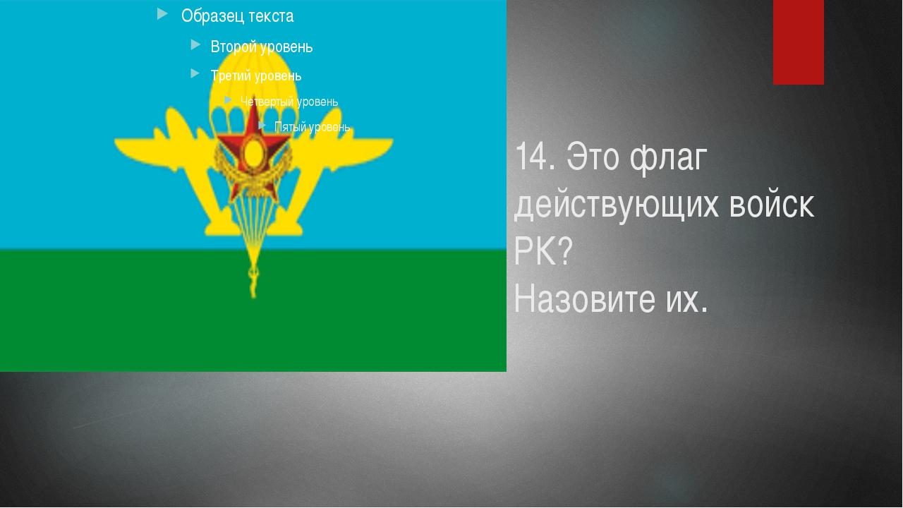 14. Это флаг действующих войск РК? Назовите их.