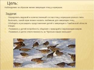 Цель: Наблюдение за образом жизни зимующих птиц у кормушек. Задачи: Определи