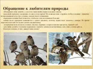 Обращение к любителям природы: «Покормите птиц зимой», а для этого выполняйт