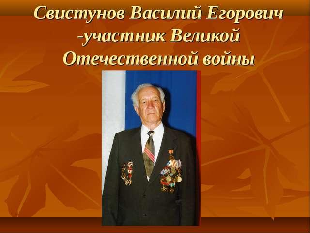 Свистунов Василий Егорович -участник Великой Отечественной войны