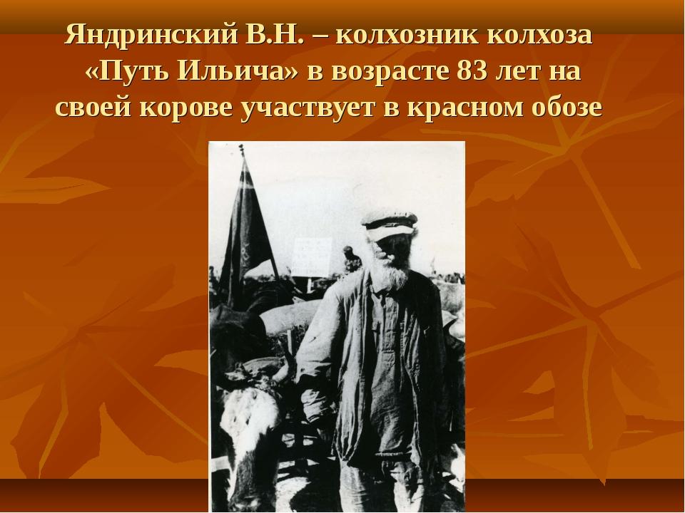 Яндринский В.Н. – колхозник колхоза «Путь Ильича» в возрасте 83 лет на своей...