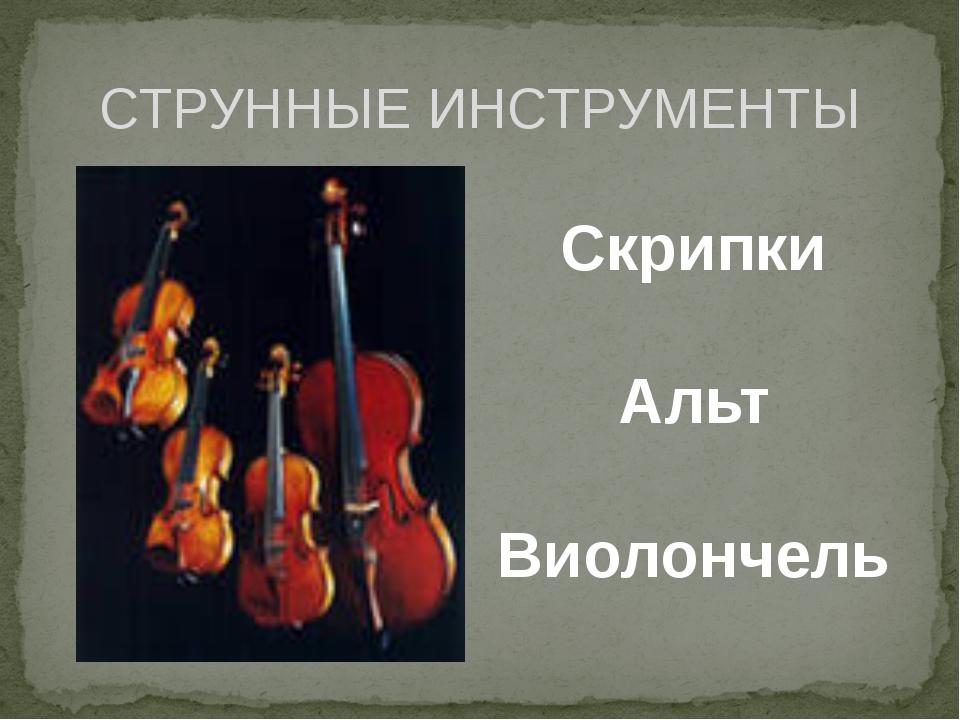 СТРУННЫЕ ИНСТРУМЕНТЫ Скрипки Альт Виолончель