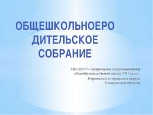 МКС(КОУ«Специальная (коррекционная) общеобразовательная школа VIII вида» Бере