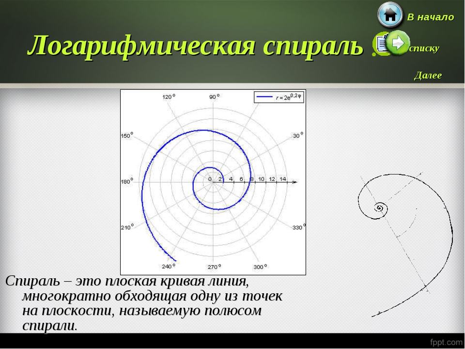 Логарифмическая спираль Спираль – это плоская кривая линия, многократно обход...