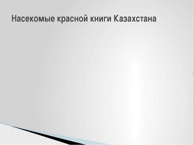 Насекомые красной книги Казахстана
