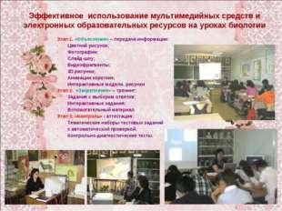 Этап 1. «Объяснение» – передача информации: Цветной рисунок; Фотографии; Слай