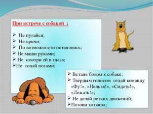 При встрече с собакой : Не пугайся; Не кричи; По возможности остановись; Не м