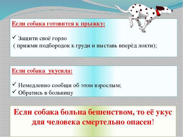 Если собака готовится к прыжку: Защити своё горло ( прижми подбородок к груди...