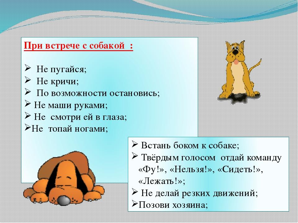 При встрече с собакой : Не пугайся; Не кричи; По возможности остановись; Не м...