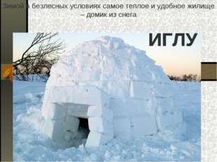 Зимой в безлесных условиях самое теплое и удобное жилище – домик из снега