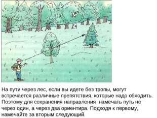 На пути через лес, если вы идете без тропы, могут встречается различные препя