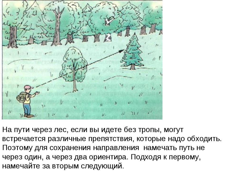 На пути через лес, если вы идете без тропы, могут встречается различные препя...