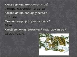 Какова длина амурского тигра? 2 метра, с хвостом – 3 метра Какова длина пальц