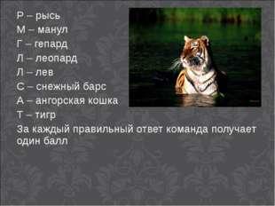 Р – рысь М – манул Г – гепард Л – леопард Л – лев С – снежный барс А – ангорс