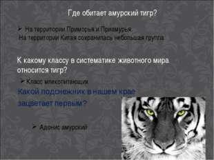 Где обитает амурский тигр? На территории Приморья и Приамурья. На территории