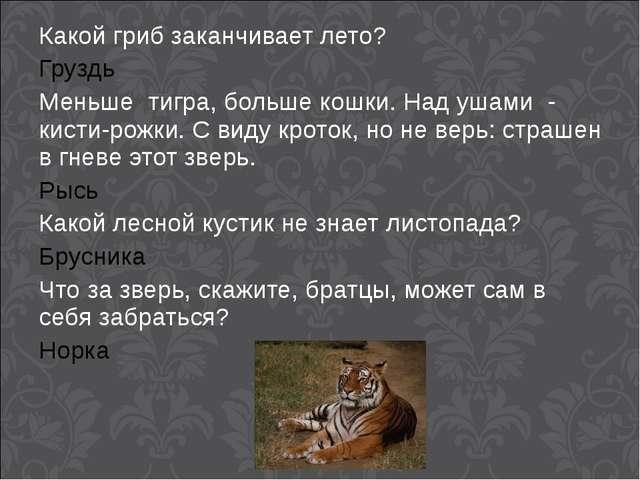 Какой гриб заканчивает лето? Груздь Меньше тигра, больше кошки. Над ушами - к...
