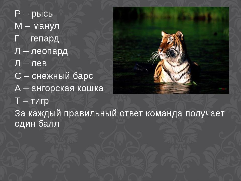 Р – рысь М – манул Г – гепард Л – леопард Л – лев С – снежный барс А – ангорс...