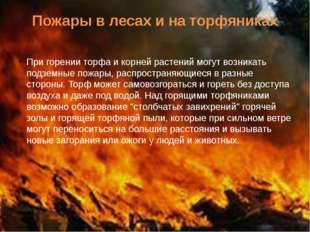 Пожары в лесах и на торфяниках При горении торфа и корней растений могут возн