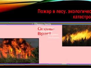 Пожар в лесу. экологическая катастрофа.