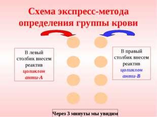 Схема экспресс-метода определения группы крови В левый столбик внесем реактив