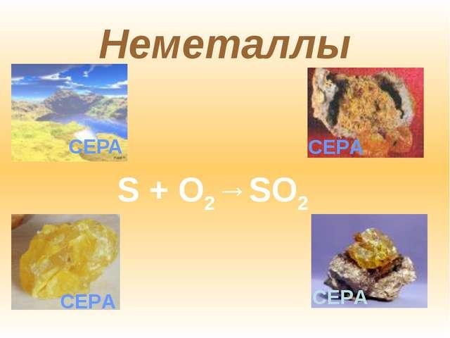 Неметаллы СЕРА S + O2→SO2 СЕРА СЕРА СЕРА