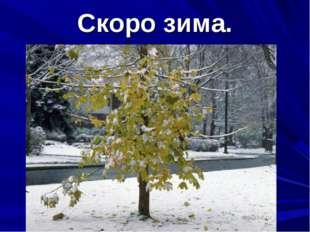 Скоро зима.