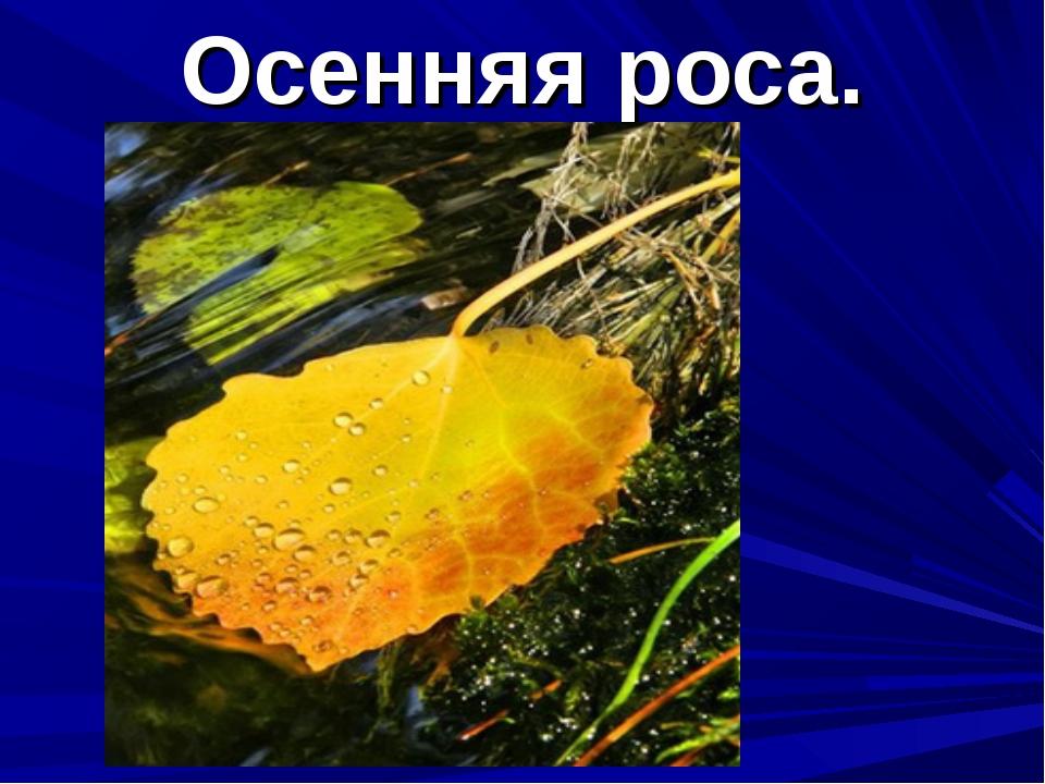 Осенняя роса.