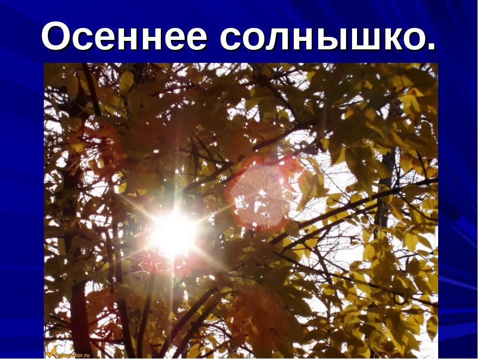 Осеннее солнышко.