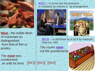 Meat - the edible flesh of mammals as distinguished from that of fish or poul