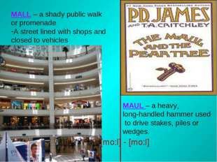 MALL – a shady public walk or promenade A street lined with shops and closed