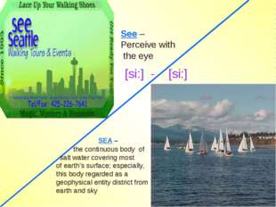 SEA – the continuous body of salt water covering most of earth's surface; es
