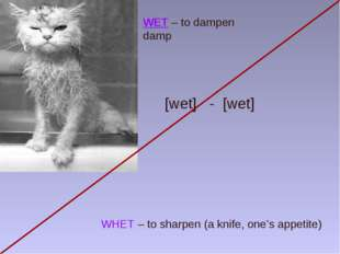 WET – to dampen damp WHET – to sharpen (a knife, one's appetite) [wet] - [wet]