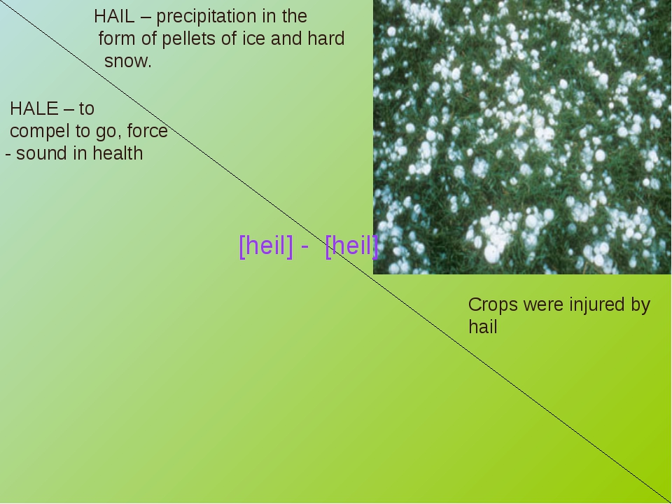 HAIL – precipitation in the form of pellets of ice and hard snow. Crops were...