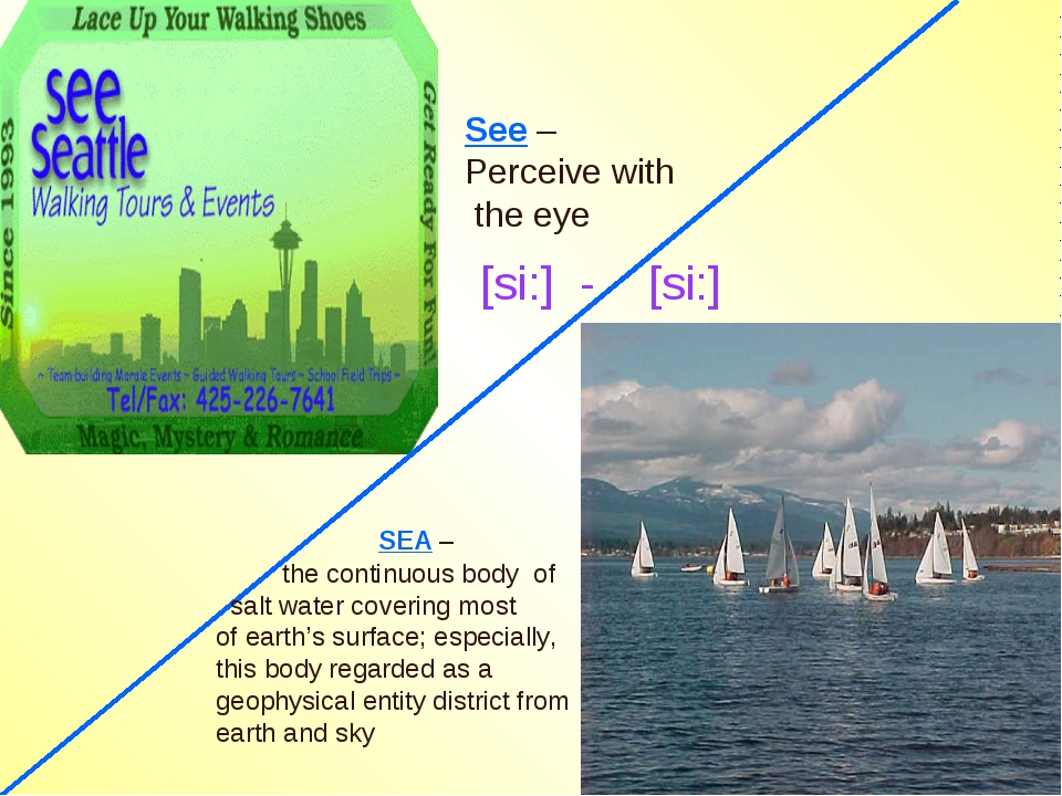 SEA – the continuous body of salt water covering most of earth's surface; es...