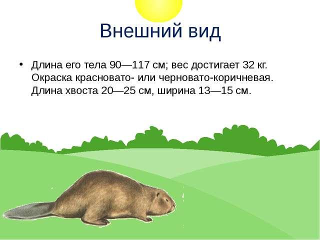 Внешний вид Длина его тела 90—117 см; вес достигает 32 кг. Окраска красновато...