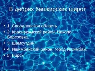 В дебрях башкирских широт 1. Свердловская область. 2. Краснокамский район, Ни