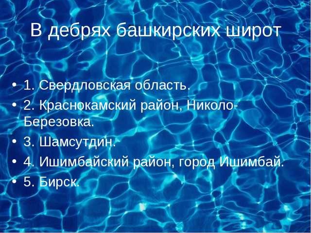 В дебрях башкирских широт 1. Свердловская область. 2. Краснокамский район, Ни...