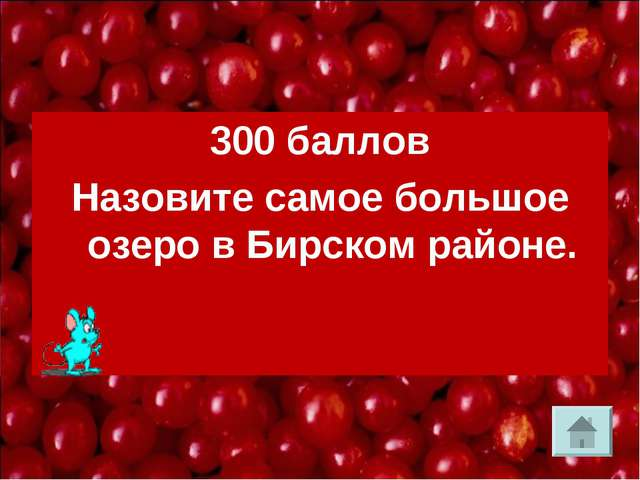 300 баллов Назовите самое большое озеро в Бирском районе.