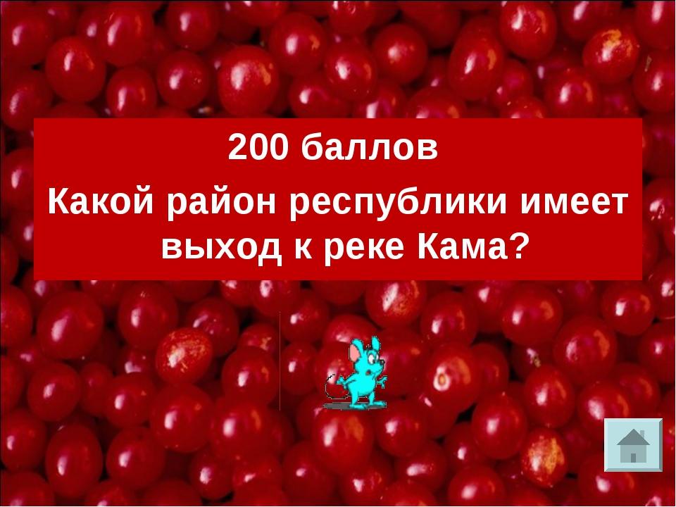 200 баллов Какой район республики имеет выход к реке Кама?