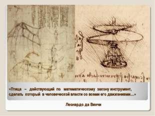 «Птица – действующий по математическому закону инструмент, сделать который в