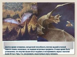 Долгое время оставалась загадочной способность летучих мышей в полной темноте