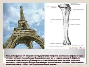 Ученые обнаружили что изящная конструкция трехсотметровой металлической Эйфел
